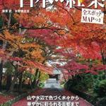 札幌秋の紅葉スポットは円山公園と定山渓